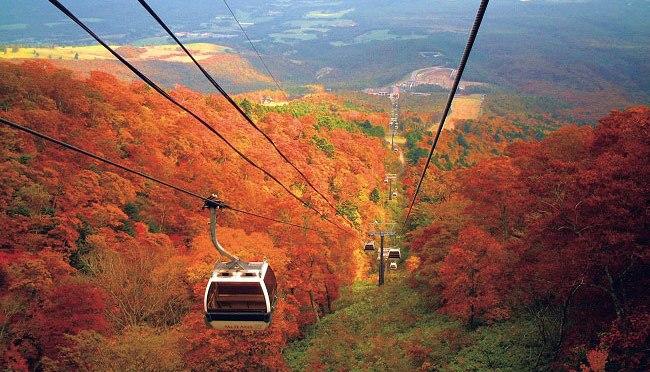 那須の紅葉は色んな表情を見せる!10月の那須を見逃すな!