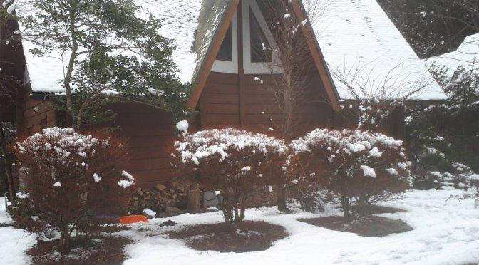 雪には気を付けましょう!都留市も積もりました。薪ストーブのある別荘民泊